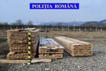 Material lemnos, în valoare de peste 58.000 de lei, ridicat în vederea confiscării, de polițiști