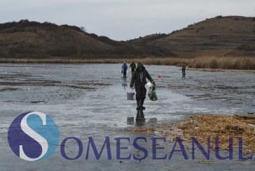 Concurs de pescuit la copcă la Săcălaia – FOTO/VIDEO