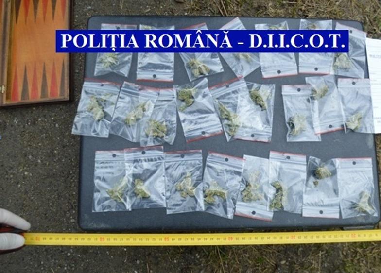 trafic de droguri-cannabis-diicot