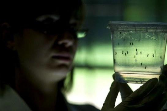 Virusul Zika a ajuns și la Cluj. Un tânăr clujean este al treilea român infectat