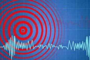 """Sistem """"Alert"""", de avertizare prin intermediul telefoniei mobile, în cazuri de urgenţă"""