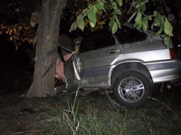 masina-copac