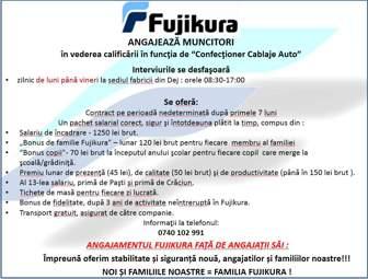 Fujikura 336×255