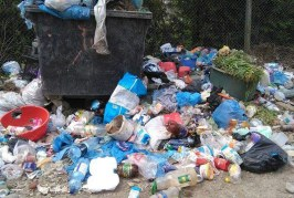 Dejenii vor plăti mai mulți bani pentru ridicarea gunoaielor. Majorarea tarifelor de salubritate, aprobată în Consiliul Local