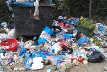 De la cititori: Locuitorii din Viile Dejului se plâng că sunt îngropați în gunoaie