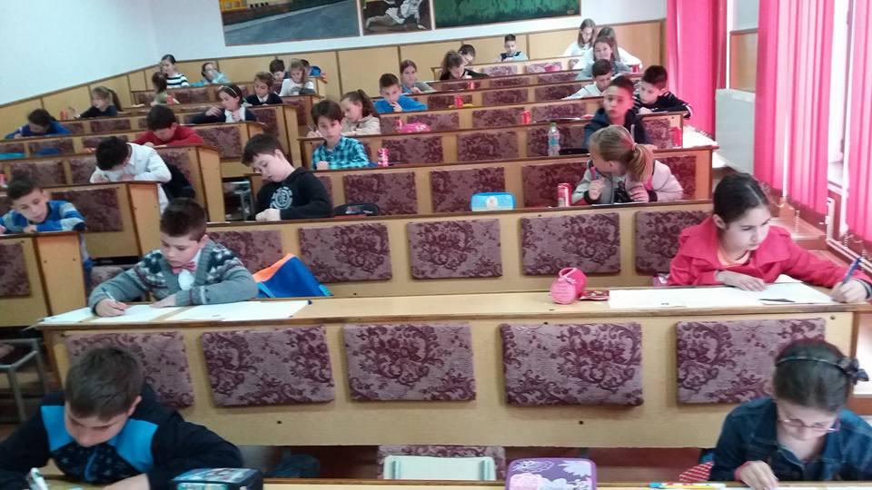 elevi concurs examen