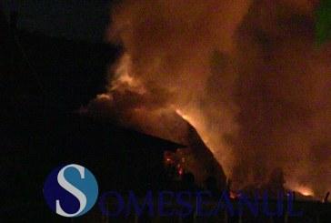 Peste 30 de animale au ars de vii într-un incendiu