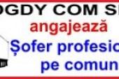 Societate comercială din Dej angajează șofer profesionist (P)