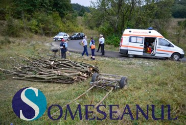 Accident la Mintiu Gherlii. O căruță plină de lemne s-a răsturnat – FOTO/VIDEO