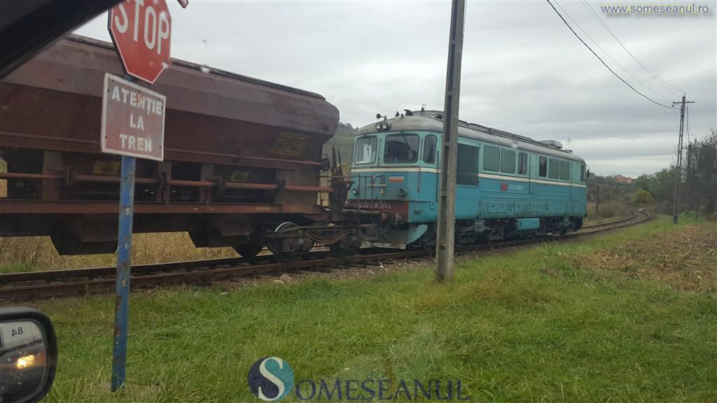 tren-marfa-calea-ferata
