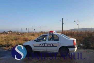 Tâlhărie soluţionată de poliţiştii din Târgu Lăpuş
