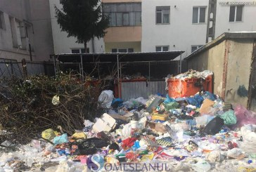 Dejul îngropat în gunoaie, înainte de sărbători. Brantner-Vereș a forțat mâna municipalității să accepte majorarea tarifelor