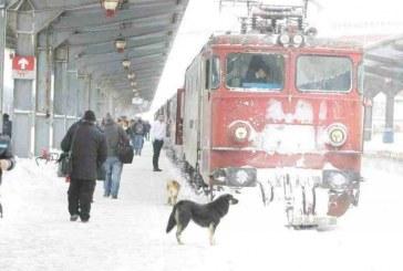 CFR Călători a anulat 40 de trenuri. Unele curse pot înregistra întârzieri la destinație