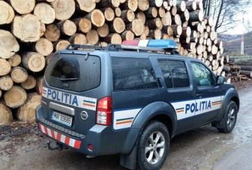 Acțiuni preventive, pentru combaterea delictelor silvice, pe valea Bârgăului.