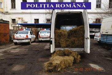 Circa 3000 de litri de alcool, fără documente de proveniență, confiscați de polițiștii Dejeni – FOTO