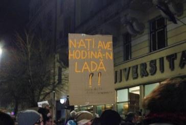 Pancartele și mesajele protestelor de la Cluj vor deveni piese de muzeu – Galerie foto