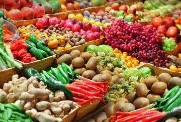 Producătorii agricoli de legume și fructe, sprijiniți financiar de Guvern, după criza embargoului impus de Rusia