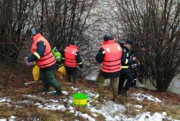 Pompierii maramureșeni au intervenit în sprijinul comunităților amenințate de topirea zăpezilor și creșterea nivelului apelor – FOTO