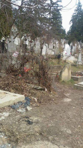 gunoaie cimitir mulatau dej