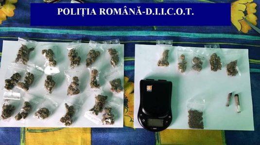 perchezitii droguri bani pistol cannabis cluj