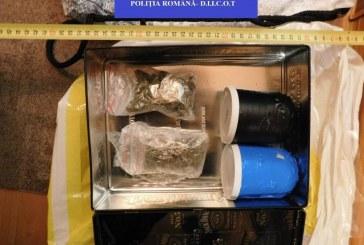 Trafic de droguri la Bistrița: 19 persoane reținute în urma perchezițiilor