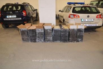 Peste 20.000 pachete cu țigări de contrabandă, descoperite la frontiera de nord – FOTO