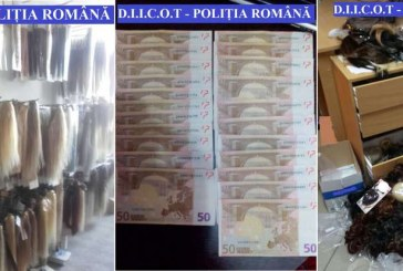 Comercianți de extensii de păr din Cluj, vizați de percheziții DIICOT