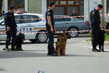 """HiperParada Animalelor, la Cluj-Napoca. Eveniment organizat cu prilejul """"Zilei Internaţionale a Câinilor de Salvare"""" şi a """"Zilei Jandarmeriei Ardelene"""""""