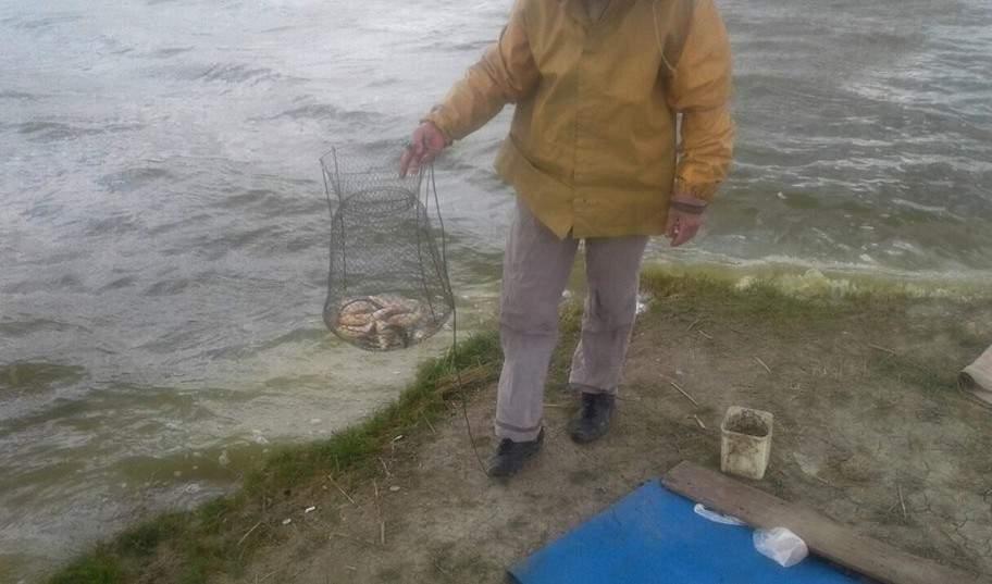 braconaj pescuit