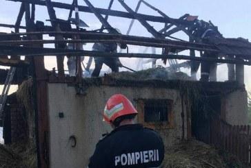 Adăpost de animale cuprins de flăcări. Pompierii au intervenit de urgență – FOTO