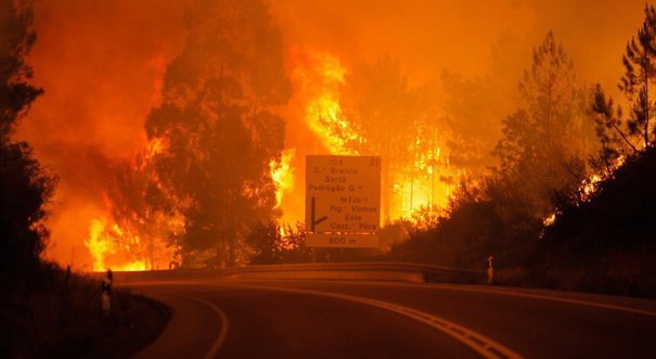 incendiu padure portugalia