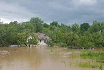 Gospodării inundate în Maramureș, în urma ploilor torențiale
