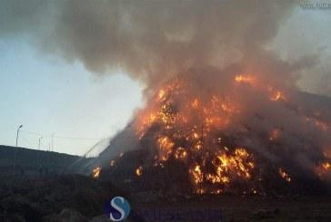 Incendiu uriaș la Pata Rât. S-au aprins gunoaiele Clujului – VIDEO
