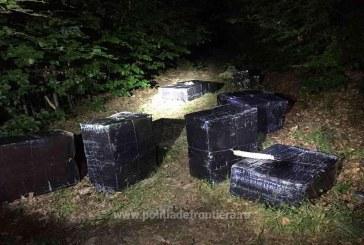 31.450 pachete cu țigări de contrabandă confiscate la frontiera de nord