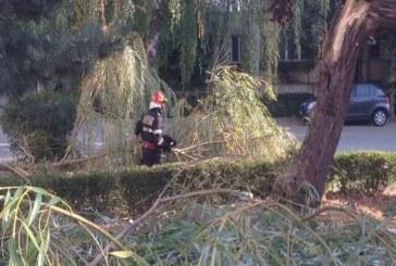 ISU Bistrița-Năsăud, bilanț după furtună după furtună: Doi morți, 17 răniți, 33 localități afectate