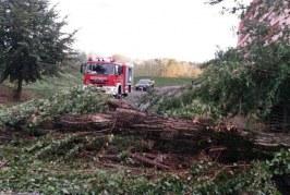 Zeci de școli și circa 4.000 de case, afectate de furtuna de duminică în Sălaj