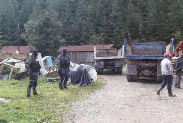 Mascații au descins la mafia pădurilor din Maramureș. Percheziții în Borșa, Moisei și Botiza – FOTO