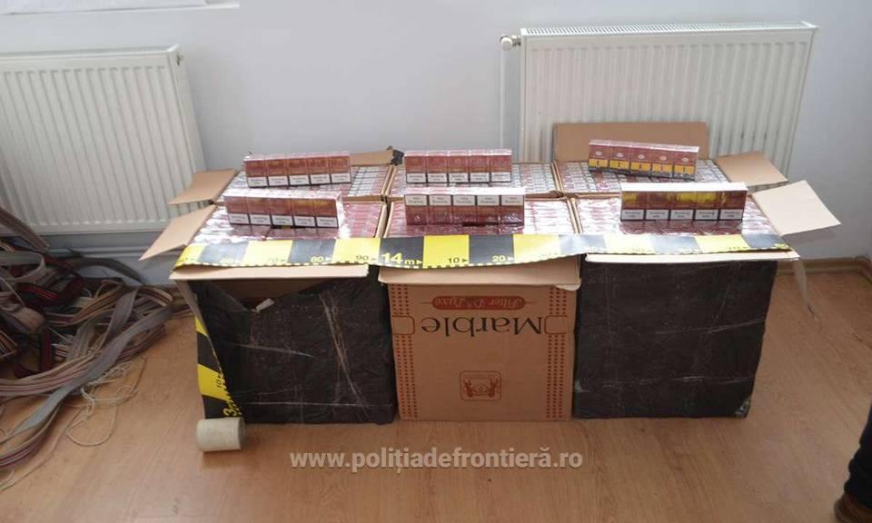 tigari contrabanda maramures