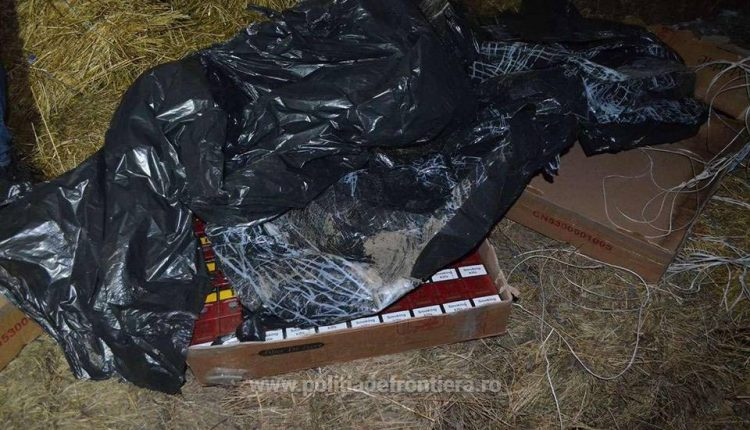 tigari contrabanda maramures saivan