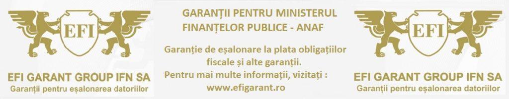 EFI Garant