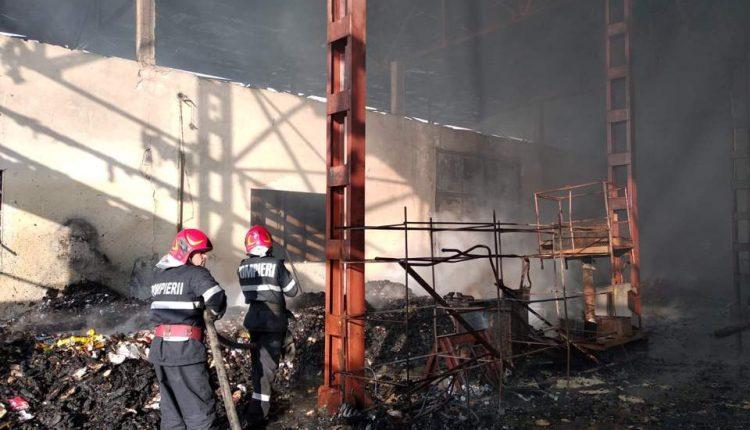 incendiu fabrica paleti targu lapus