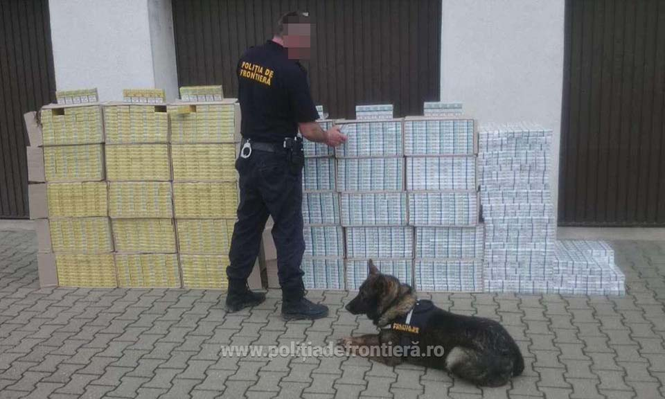 politia frontiera tigari contrabanda