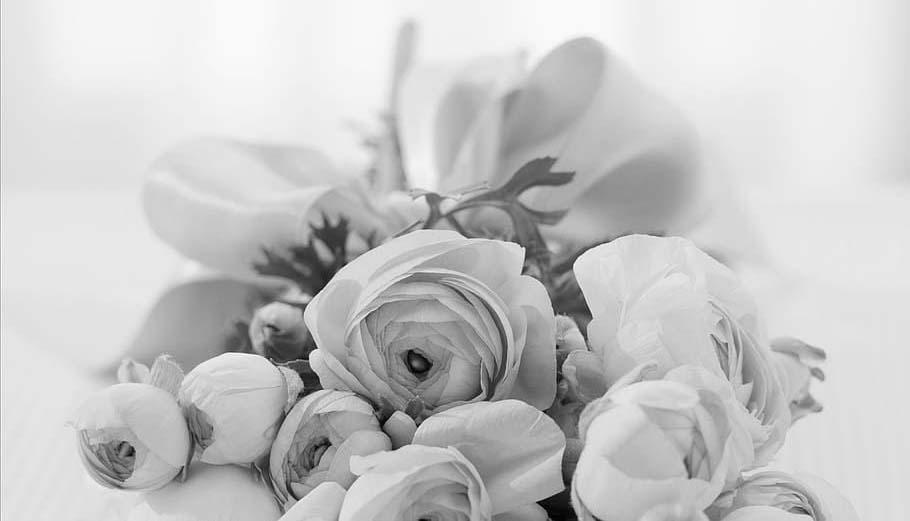 pompe funebre flori doliu deces