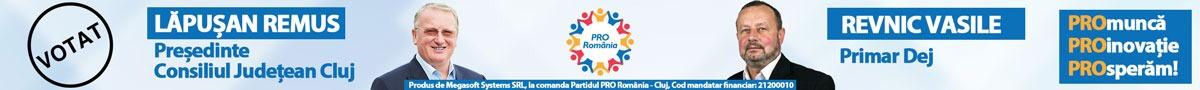 Electoral Pro Romania 1200